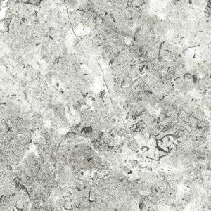 Nuance White Lightning Fossil