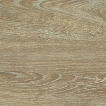 Options Mondego Oak