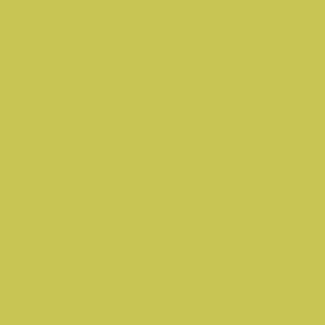 Prima Wasabi Full Length Image
