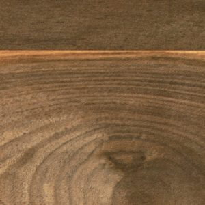 Axiom Wide Planked Walnut Tile